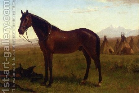 Portrait of a Horse by Albert Bierstadt - Reproduction Oil Painting