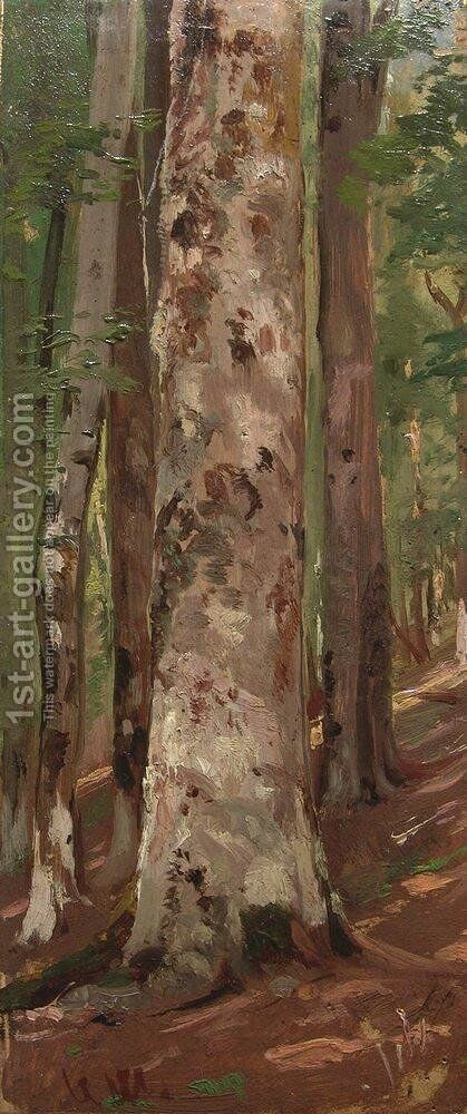 Forest 5 by Ivan Shishkin - Reproduction Oil Painting