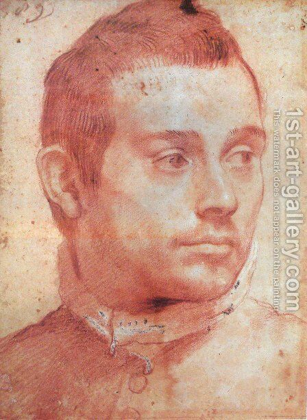 Portrait of a man by Annibale Carracci - Reproduction Oil Painting