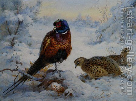 Cock and Hen Pheasant in Winter by Archibald Thorburn - Reproduction Oil Painting