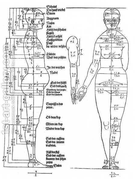 Studies on the Proportions of the Female Body by Albrecht Durer - Reproduction Oil Painting