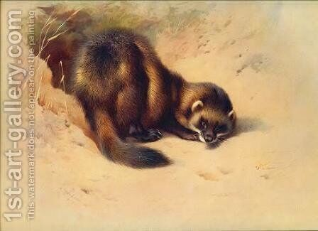 European polecat by Archibald Thorburn - Reproduction Oil Painting