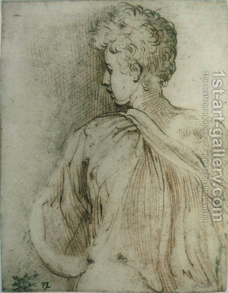 Young man seen from behind, face in profile by Girolamo Francesco Maria Mazzola (Parmigianino) - Reproduction Oil Painting