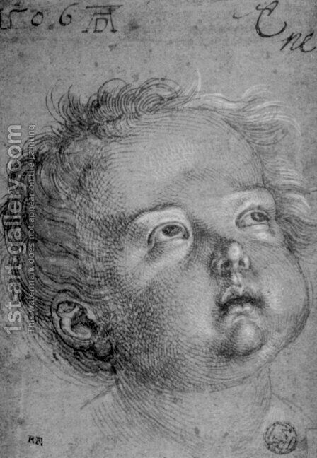 Child's Head by Albrecht Durer - Reproduction Oil Painting