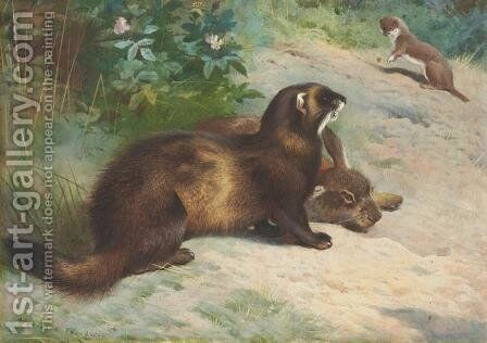 European polecat defending a rabbit carcass from a least weasel by Archibald Thorburn - Reproduction Oil Painting