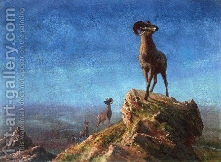 Rocky Mountain Big Horns by Albert Bierstadt - Reproduction Oil Painting