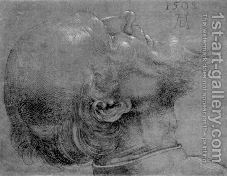 Head of an apostle 2 by Albrecht Durer - Reproduction Oil Painting