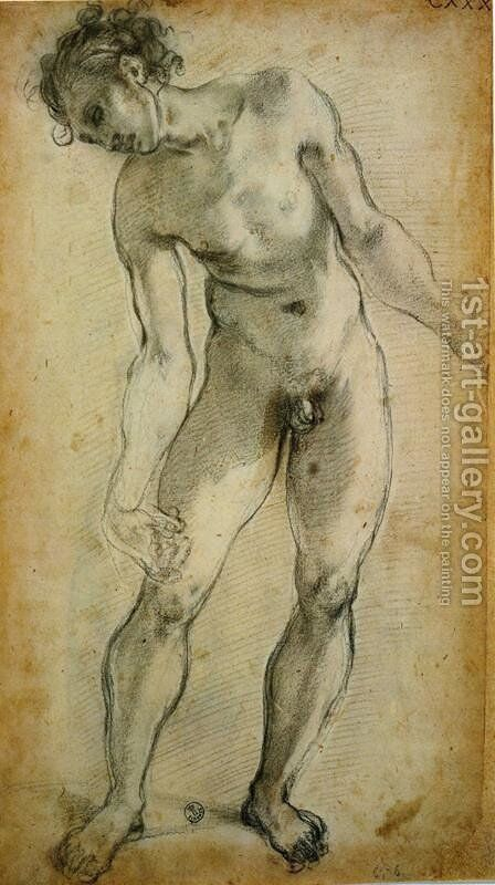 Male Nude by (Jacopo Carucci) Pontormo - Reproduction Oil Painting