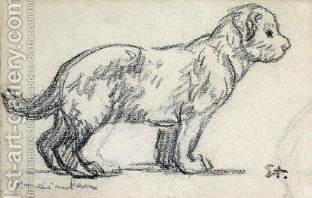 Study of a puppy by Theophile Alexandre Steinlen - Reproduction Oil Painting