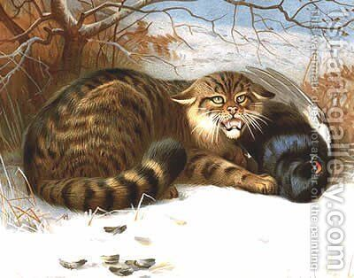 Wildcat by Archibald Thorburn - Reproduction Oil Painting