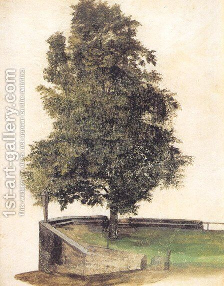Tilo on the cantilever of a bastion by Albrecht Durer - Reproduction Oil Painting