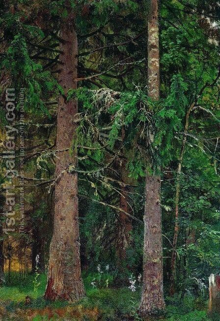 Fir forest 4 by Ivan Shishkin - Reproduction Oil Painting