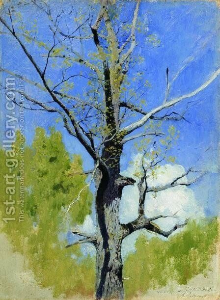 Trunk of burgeoning oak by Isaak Ilyich Levitan - Reproduction Oil Painting