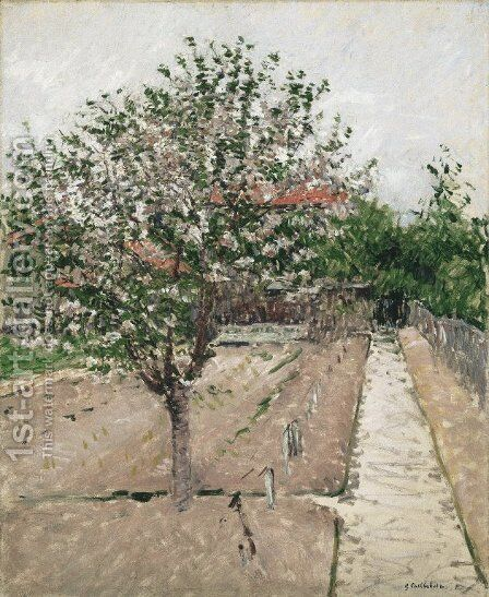 Apple Tree in Blossom by Gustave Caillebotte - Reproduction Oil Painting