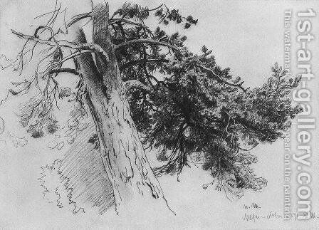 Part of the trunk of a pine. Mary-Howe by Ivan Shishkin - Reproduction Oil Painting