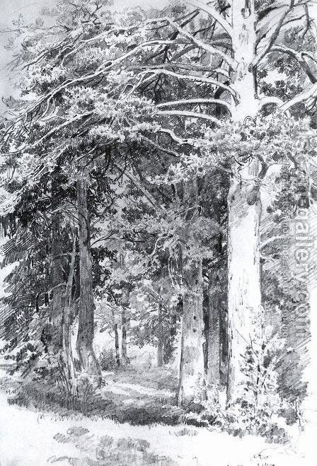 Pine forest 12 by Ivan Shishkin - Reproduction Oil Painting