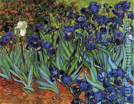 Irises by Vincent Van Gogh Oil Painting Print on Museum Quality Canvas