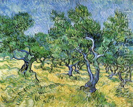 Olive Grove II by Vincent Van Gogh - Reproduction Oil Painting