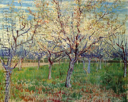 Orchard With Blossoming Apricot Trees by Vincent Van Gogh - Reproduction Oil Painting