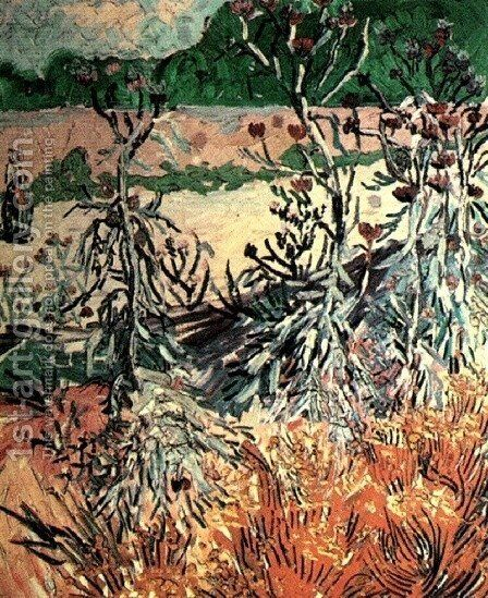 Thistles by Vincent Van Gogh - Reproduction Oil Painting