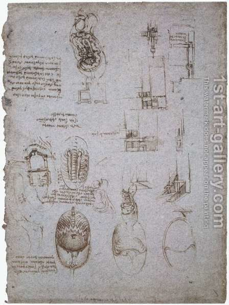 Studies Of The Villa Melzi And Anatomical Study by Leonardo Da Vinci - Reproduction Oil Painting
