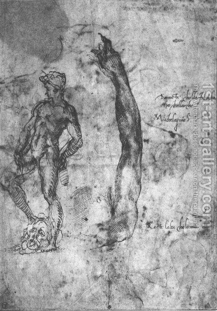 Study For An Arm Of The Marble David And The Figure Of The Bronze David by Michelangelo - Reproduction Oil Painting