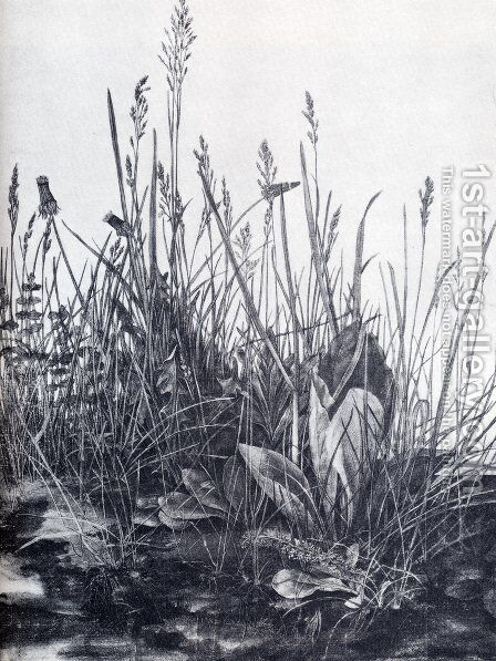 The So Called Great Piece Of Turf by Albrecht Durer - Reproduction Oil Painting