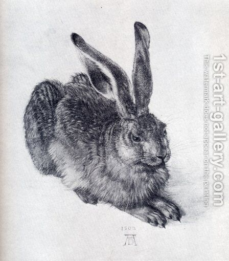 Young Hare by Albrecht Durer - Reproduction Oil Painting