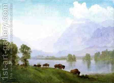 Buffalo Country by Albert Bierstadt - Reproduction Oil Painting