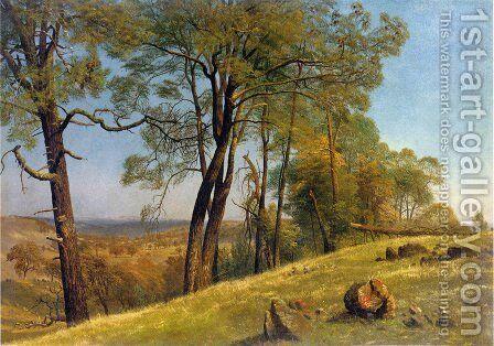 Landscape  Rockland County  California by Albert Bierstadt - Reproduction Oil Painting