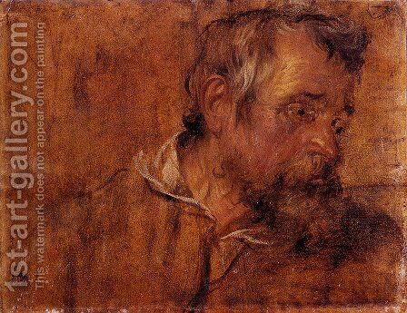 Profile Study Of A Bearded Old Man by Sir Anthony Van Dyck - Reproduction Oil Painting
