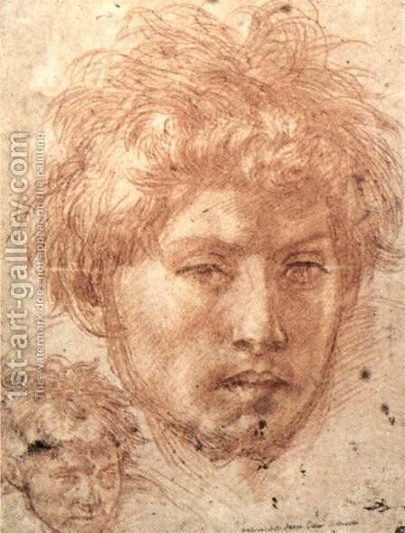 Head Of A Young Man by Andrea Del Sarto - Reproduction Oil Painting