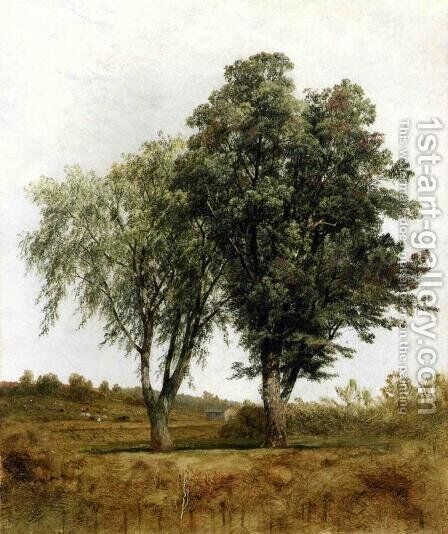A Study Of Trees by John Frederick Kensett - Reproduction Oil Painting