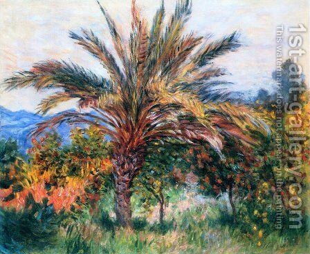 A Palm Tree At Bordighera by Claude Oscar Monet - Reproduction Oil Painting