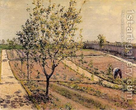 Kitchen Garden  Petit Gennevilliers by Gustave Caillebotte - Reproduction Oil Painting