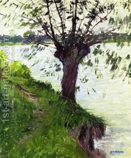 Willow On The Banks Of The Seine by Gustave Caillebotte - Reproduction Oil Painting