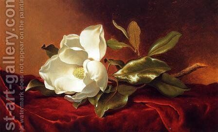 A Magnolia On Red Velvet by Martin Johnson Heade - Reproduction Oil Painting