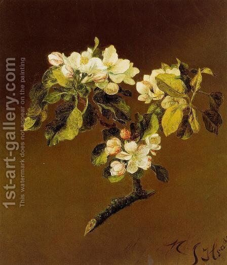 A Spray Of Apple Blossoms by Martin Johnson Heade - Reproduction Oil Painting
