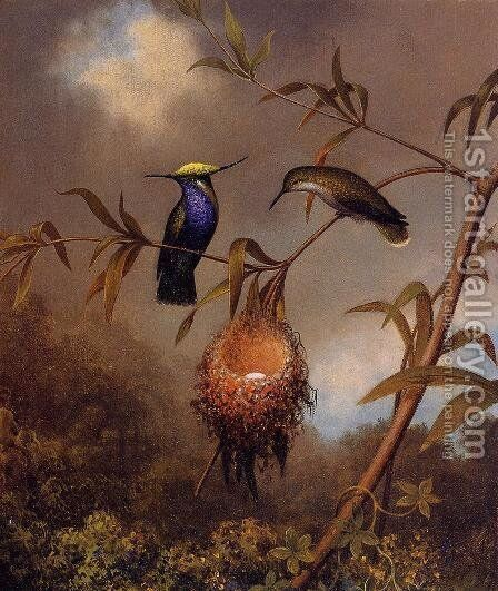 Black Breasted Plovercrest by Martin Johnson Heade - Reproduction Oil Painting