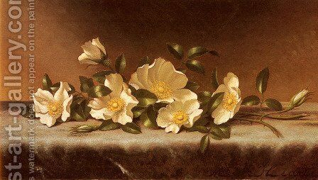 Cherokee Roses On A Light Gray Cloth by Martin Johnson Heade - Reproduction Oil Painting