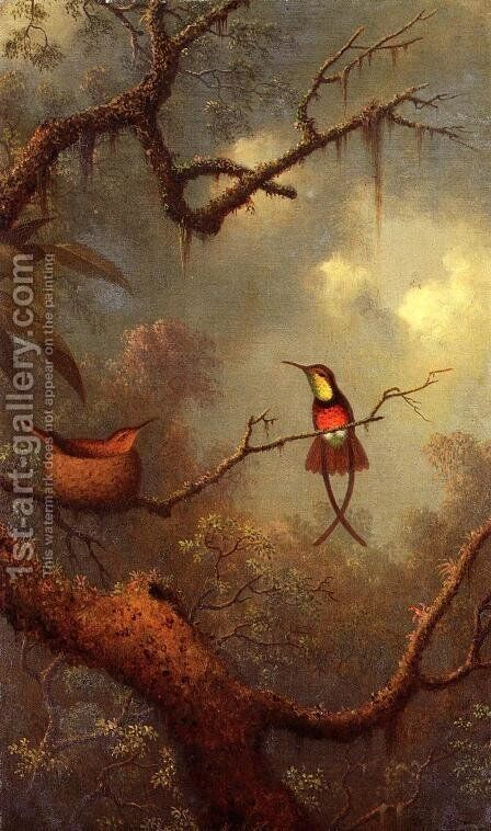 Cromson Topaz Hummingbirds Nesting In A Tropical Forest by Martin Johnson Heade - Reproduction Oil Painting