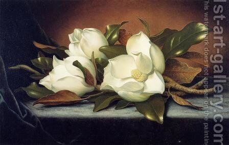 Giant Magnolias by Martin Johnson Heade - Reproduction Oil Painting