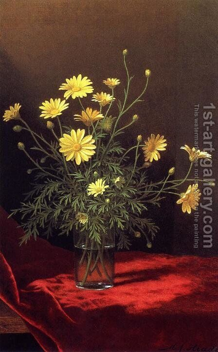 Golden Marguerites by Martin Johnson Heade - Reproduction Oil Painting