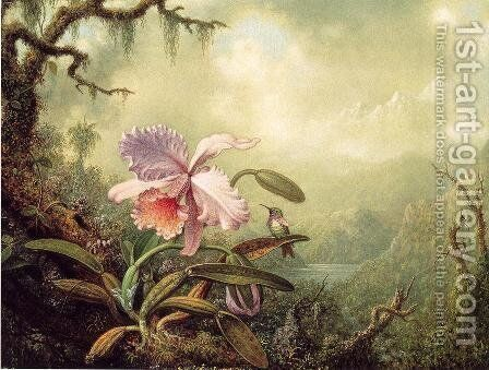Heliodores Woodstar And A Pink Orchid by Martin Johnson Heade - Reproduction Oil Painting