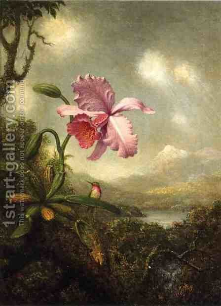 Hummingbird And Orchid Sun Breaking Through The Clouds by Martin Johnson Heade - Reproduction Oil Painting