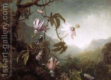 Hummingbird Perched Near Passion Flowers by Martin Johnson Heade - Reproduction Oil Painting