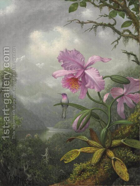 Hummingbird Perched On An Orchid Plant by Martin Johnson Heade - Reproduction Oil Painting