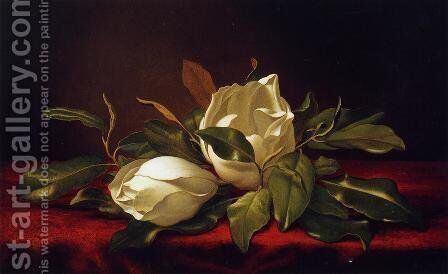 Magnoliae Grandeflorae by Martin Johnson Heade - Reproduction Oil Painting