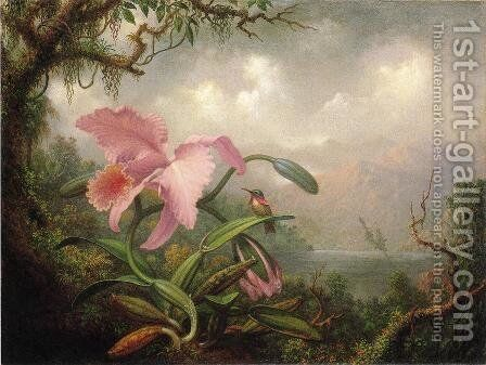 Orchid And Hummingbird by Martin Johnson Heade - Reproduction Oil Painting