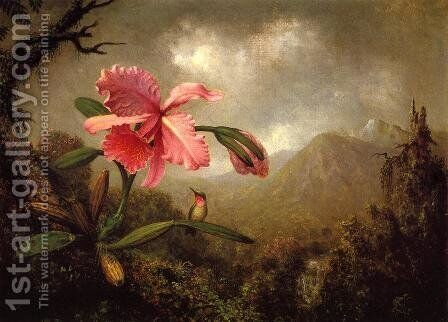 Orchid And Hummingbird Near A Mountain Waterfall by Martin Johnson Heade - Reproduction Oil Painting